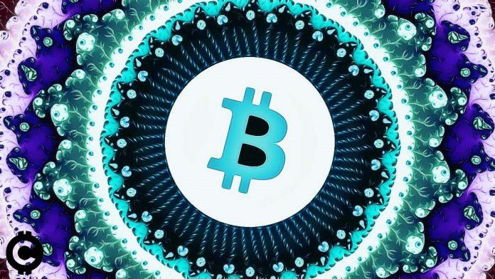 bitcoin fraktal predikcia teoria