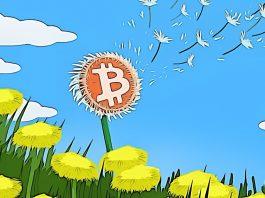 Bitcoin začíná skvělý druhý kvartál - Dlouhodobý vývoj ukazuje bullish trend!