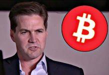 craig wright bitcoin tulip trust