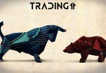 bear-bull-býk-medvěd-btc-bitcoin-