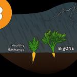 Objemy na CoinMarketCapu vypadají reálně - Věříte novému algoritmu od Binance?